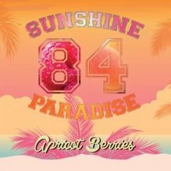 Concentré DIY Apricot Berries - Sunshine Paradise