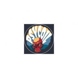 Résistances PsyCoil Fused Clapton (x2)